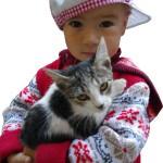 arina-c-cat